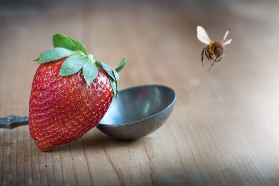 Přírodní včelí produkty
